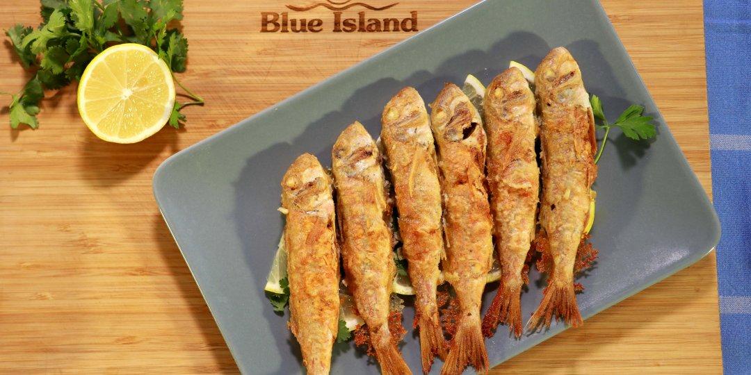 Κουτσομούρες Blue Island, light σαν τηγανητές - Images