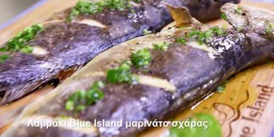Λαβράκι Blue Island μαρινάτο σχάρας (video) - Κεντρική Εικόνα