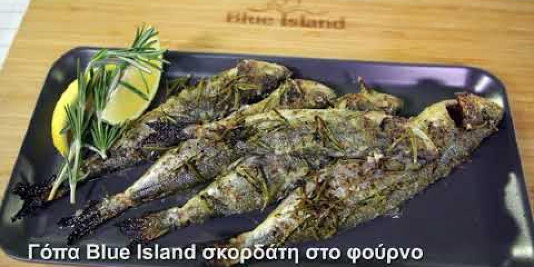 Γόπα Blue Island σκορδάτη στο φούρνο (video) - Κεντρική Εικόνα