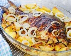 Κυπρίνος στο φούρνο  - Images