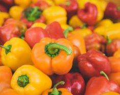 Πολύχρωμες πιπεριές: όλα όσα πρέπει να γνωρίζεις - Κεντρική Εικόνα