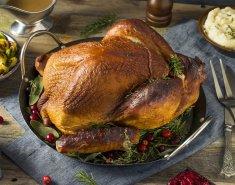 Χήνα ή πάπια χριστουγεννιάτικη FOODSAVER - Images