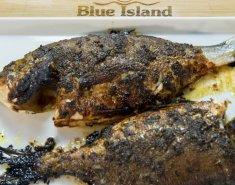 Τσιπούρα Blue Island με γλυκιά σάλτσα μουστάρδας - Images
