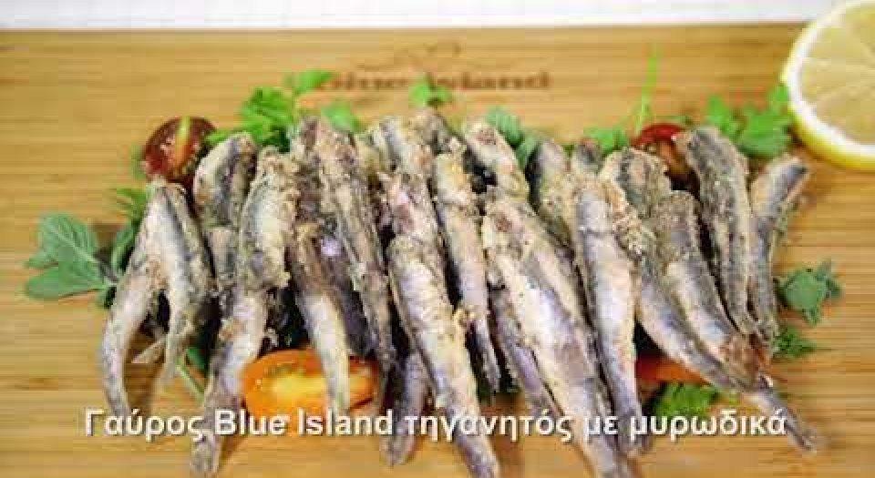Γαύρος Blue Island τηγανητός με μυρωδικά (video) - Κεντρική Εικόνα