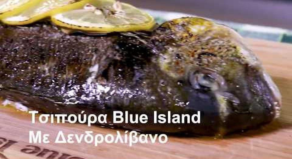 Τσιπούρα Blue Island με δεντρολίβανο (video) - Κεντρική Εικόνα