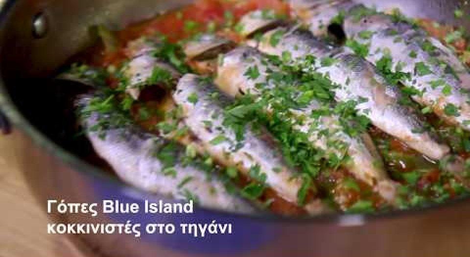 Γόπες Blue Island κοκκινιστές στο τηγάνι (video) - Κεντρική Εικόνα